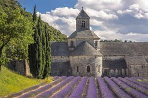 France, Provence. Lavender field and Senanque Abbey. by Jaynes Gallery