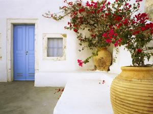 Greece, Santorini. Blue door to house and potted flowers. by Jaynes Gallery