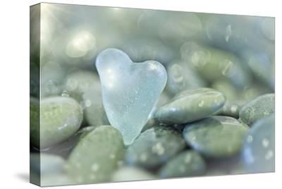 Heart-Shaped Beach Glass and Wet Rocks, Seabeck, Washington, USA by Jaynes Gallery