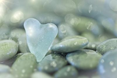 Heart-Shaped Beach Glass and Wet Rocks, Seabeck, Washington, USA by Jaynes Gallery