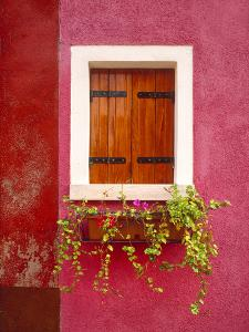 Italy, Burano. Colorful window and walls. by Jaynes Gallery