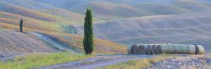 Italy, Tuscany. Hay Bales and Farmland by Jaynes Gallery