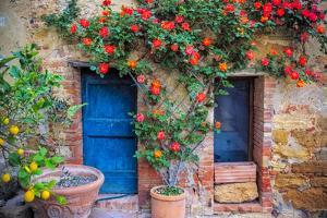 Italy, Val d' Orcia. two doors with vegetation by Jaynes Gallery