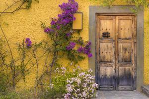 Mexico, San Miguel De Allende. Wooden Doorway by Jaynes Gallery