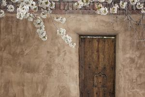 New Mexico, Santa Fe. Weathered Door to Home by Jaynes Gallery