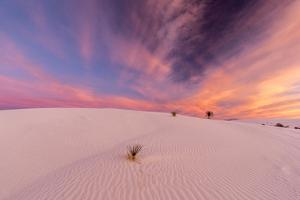 New Mexico, White Sands National Monument. Sunrise on Desert Sand by Jaynes Gallery