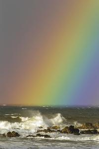Rainbow and Waves, Hookipa Beach Park, Mauii, Hawaii, USA by Jaynes Gallery