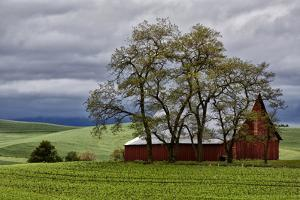 Red Barn under Stormy Skies with Green Peas, Palouse, Washington, USA by Jaynes Gallery