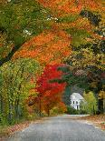 Road Lined in Fall Color, Andover, New England, New Hampshire, USA-Jaynes Gallery-Photographic Print