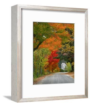 Road Lined in Fall Color, Andover, New England, New Hampshire, USA