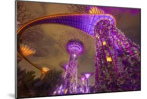 Singapore. Garden by the Sea Towers at Night by Jaynes Gallery