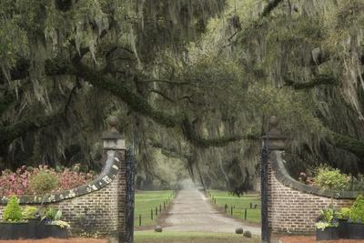 South Carolina, Charleston. Entrance to Boone Hall Plantation