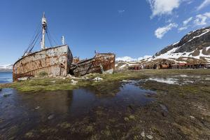 South Georgia Island, Grytviken. Abandoned Whaling Ships and Whaling Station Gather Rust by Jaynes Gallery