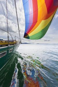 SV Nawalk with Spinnaker Flying, San Juan Islands, Washington, USA by Jaynes Gallery