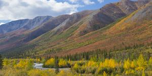 USA, Alaska, Brooks Range. Mountain landscape with stream. by Jaynes Gallery