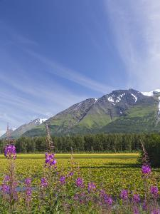 USA, Alaska, Kenai Peninsula. Mountain and lake landscape. by Jaynes Gallery
