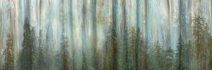 USA, Alaska, Misty Fiords National Monument. Panoramic collage of paint-splattered curtain. by Jaynes Gallery