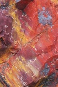 USA, Arizona, Petrified Forest National Park. Petrified Wood Detail by Jaynes Gallery
