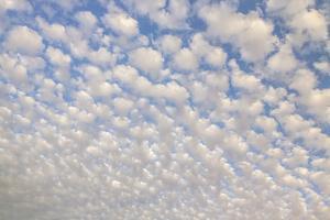 USA, Arizona, Sonoran Desert. Morning cloud formations. by Jaynes Gallery