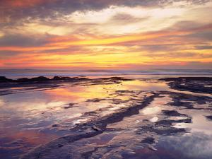 USA, California, San Diego, Sunset Cliffs Tide Pools, Pacific Ocean by Jaynes Gallery