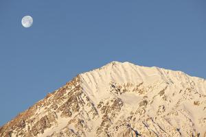 USA, California, Sierra Nevada Mountains. Moonset behind Mt. Tom. by Jaynes Gallery