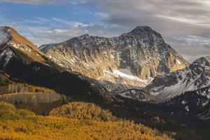 USA, Colorado, Maroon Bells-Snowmass Wilderness. Capitol Peak and aspen forest landscape. by Jaynes Gallery