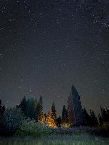 USA, Colorado. Night Sky at Lost Lake Slough by Jaynes Gallery