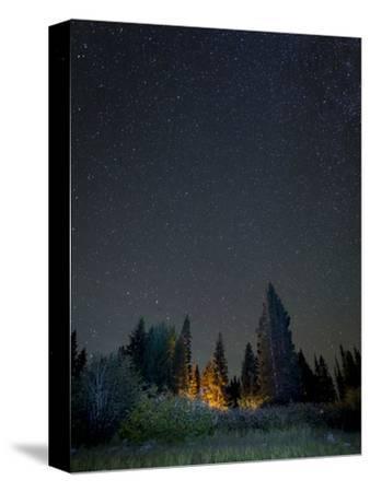 USA, Colorado. Night Sky at Lost Lake Slough