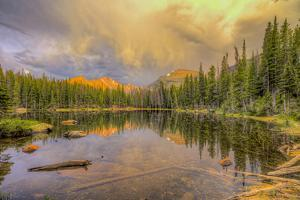 USA, Colorado, Rocky Mountain National Park. Reflections in Nymph Lake. by Jaynes Gallery