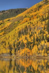 USA, Colorado, San Juan Mountains. Forest reflects in Lower Crystal Lake. by Jaynes Gallery