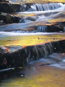 USA, Maine, Acadia National Park. Autumn Reflections in Stream by Jaynes Gallery