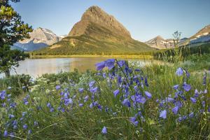 USA, Montana, Glacier National Park. USA, Montana, Glacier National Park, Swiftcurrent Lake, Grinne by Jaynes Gallery