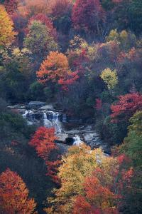 USA, New York, Adirondack Mountains. Autumn Trees and Waterfalls by Jaynes Gallery