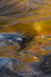 USA, New York, Adirondack State Park. Autumn reflections on stream. by Jaynes Gallery