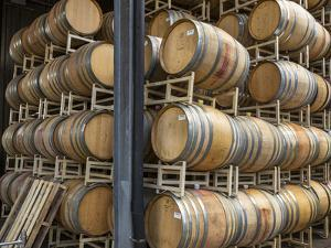 USA, Oregon, Elk Cove Winery. Oak storage barrels. by Jaynes Gallery