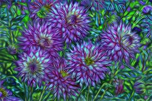 USA, Oregon, Shore Acres State Park. Abstract of dahlias in garden. by Jaynes Gallery