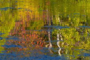 USA, Pennsylvania, Delaware Water Gap Recreational Area. Autumn reflections on water. by Jaynes Gallery