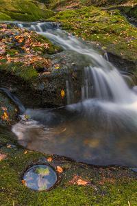 USA, Pennsylvania, Delaware Water Gap Recreational Area. Dingmans Creek scenic. by Jaynes Gallery