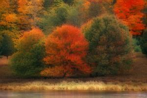 USA, Pennsylvania, Pocono Mountains. Autumn Landscape Montage by Jaynes Gallery