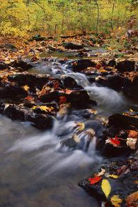 USA, Pennsylvania, Pocono Mountains. Cascade in Autumn Scenic by Jaynes Gallery