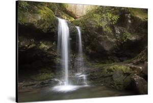 USA, Tennessee, Great Smoky Mountains National Park. Grotto Falls Scenic by Jaynes Gallery