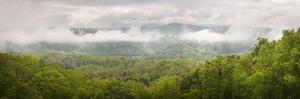 USA, Tennessee, Great Smoky Mountains National Park. Misty Morning Panoramic by Jaynes Gallery