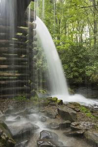 USA, Tennessee, Great Smoky Mountains National Park. Water Coursed Through Mingus Mill by Jaynes Gallery
