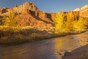 USA, Utah, Capitol Reef NP. The Castle formation and Fremont River. by Jaynes Gallery