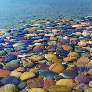 USA, Utah. Colorful Rocks in Lake Powell by Jaynes Gallery