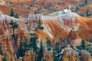 USA, Utah. Hoodoo Formations in Bryce Canyon National Park by Jaynes Gallery