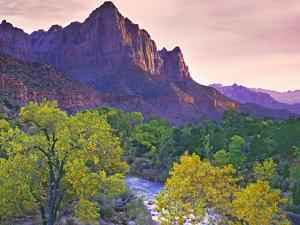 USA, Utah, Zion National Park. The Watchman formation and the Virgin River in autumn. by Jaynes Gallery