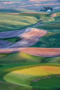 USA, Washington. Patterns and Colors of the Palouse Region by Jaynes Gallery