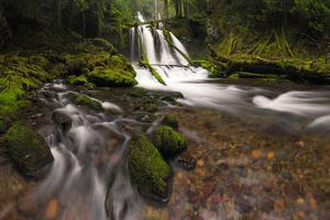 USA, Washington State, Lower Panther Creek Falls. Waterfall and stream. by Jaynes Gallery