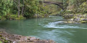 USA, Washington State, Moulton Falls Regional Park. Lewis River landscape with bridge. by Jaynes Gallery